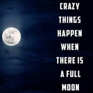 my memory club Full Moon -crazy things